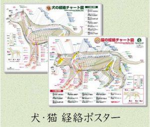 犬・猫経絡ポスター