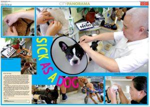 金日山先生01|JTCVM国際中獣医アカデミー日本校『上海中医学研修ツアー』