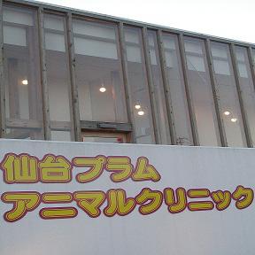 仙台プラム アニマルクリニック
