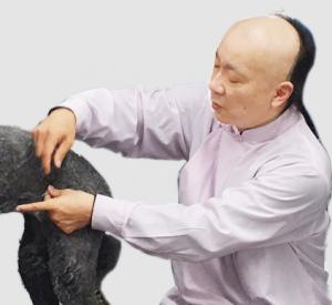 JTCVM国際中獣医アカデミー日本校特別講座-01