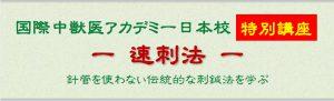 国際中獣医アカデミー日本校 特別講座 ー 速刺法 ー 針管を使わない伝統的な刺鍼法を学ぶ