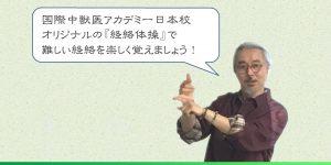 経絡体操01-JTCVM国際中獣医アカデミー日本校