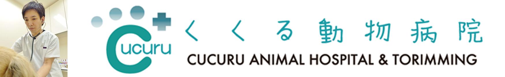 2017.12.0206_大塚央之先生開業|国際中獣医学院日本校