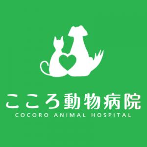 前田克志|国際中獣医学院日本校認定中獣医鍼灸師