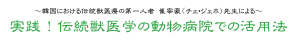 実践!伝続医学の動物病院での活用法|JTCVM国際中獣医学院日本校