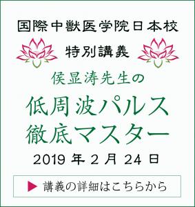 侯显涛先生の低周波パルス講義|JTCVM国際中獣医学院日本校