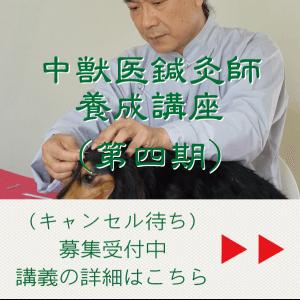 中獣医鍼灸師養成講座(第四期)(キャンセル待ち) JTCVM国際中獣医学院日本校