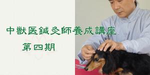 中獣医鍼灸師養成講座(第四期)|JTCVM国際中獣医学院日本校