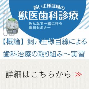 獣医歯科診療セミナー|JTCVM国際中獣医学院日本校
