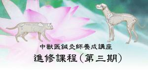 進修課程|JTCVM国際中獣医学院日本校