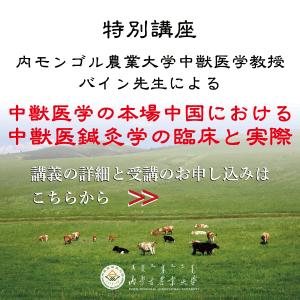 バナー画像|中獣医学の本場中国における中獣医鍼灸学の臨床と実際2