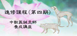 進修課程 JTCVM国際中獣医学院日本校
