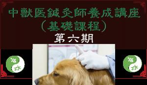 中獣医鍼灸師養成講座(基礎課程)第六期 JTCVM国際中獣医学院日本校