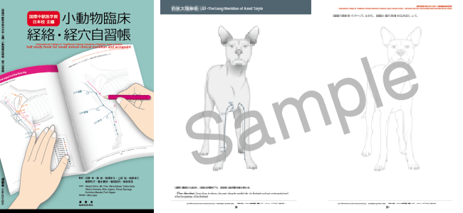 小動物臨床経絡・経絡自習帳|JTCVM国際中獣医学院日本校