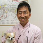 豊永眞弥|国際中獣医学院日本校講師